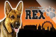 Играть в игровой автомат Rex от казино gaminatorslots картинка логотип